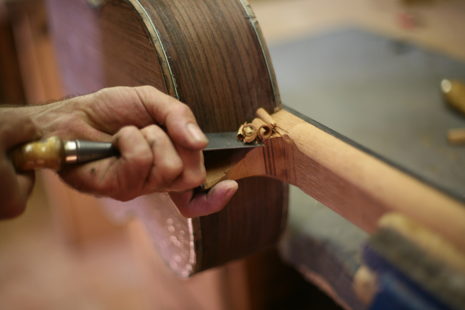 Guitar makers 017